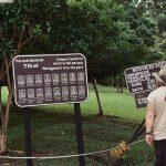 Ranger at Tikal